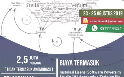 Training System Dynamics in Bali